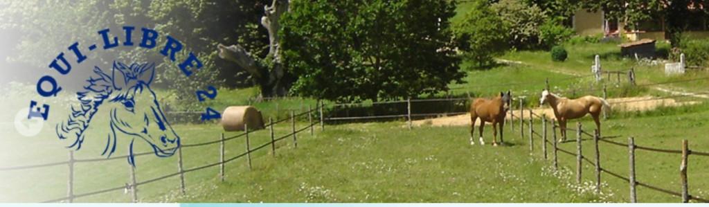 Pension Premium pour chevaux - Domaine de l'Ô - Gîte Périgord